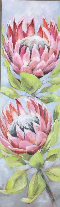 Protea Art, Protea Flower, Art Floral, Floral Drawing, Acrylic Flowers, Watercolor Flowers, Watercolor Art, Botanical Drawings, Botanical Art
