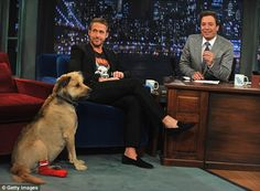 Gorgeous George: The dog went with Ryan everywhere - here they are seen on the Late Night With Jimmy Fallon show in 2011