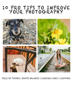 10 Pro Tips to Improve Your Blog Photography #photography #blog #photographytips