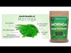The absolutely Amazing health Benefits of Moringa Healthy Cholesterol Levels, Health Benefits, Diabetes, Herbs, Organic, Facebook, Guys, Twitter, Moringa Oleifera