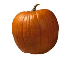 Seasonal Produce: How to Buy, Store and Cook Pumpkins - Kraft Recipes