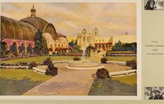 """Image from page 18 of """"Official Views San Diego Panama-California Exposition San Diego All the Year 1915"""" (1915) 