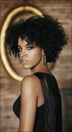 Love this style! Brown Truth's Blog (Natural hair, Natural hairstyles, twist out)