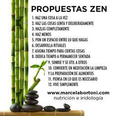 Propuestas zen