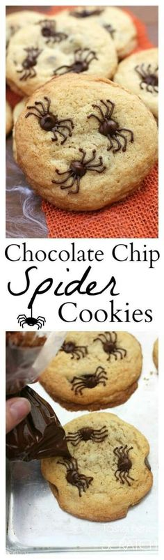 Pin for Later: halloween food recipes. Chocolate Chip Spider Cookies make the perfect fun and easy Halloween treat! Bolo Halloween, Postres Halloween, Dessert Halloween, Halloween Baking, Halloween Food For Party, Holiday Baking, Creepy Halloween, Halloween Chocolate, Halloween Parties