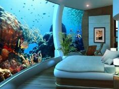 Poseidon Undersea resort, Fiji. I want to go here, but it cost a arm to booked rm
