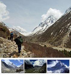 Gangotri  Trek – Uttrakhand  Trekking - Tours From Delhi - Custom made Private Guided Tours in India - http://toursfromdelhi.com/gangotri-trekking-11n12d/