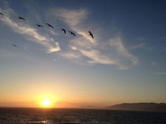 #sunset #solstice #sfo #sutrobaths