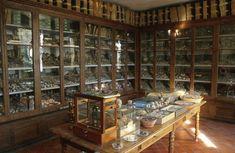jean henri fabre collections | ... Toulon & Var Université de Provence Harmas de Fabre Jardin Val Rahmeh