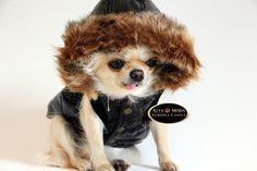 ropa lujosa para perros