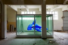 Paying homage to Damien Hirst's famous installation The Physical Impossibility of Death in the Mind of Someone Living in which a tiger shark is preserved in a display case with formaldehyde, Spanish artist Alfonso Batalla presents a reinterpretation dubbed A Dolphin For Damien.