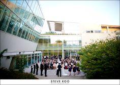 Peggy Notebaert Nature Museum : Chicago Wedding Venues