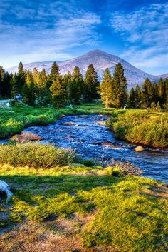 Dana Fork Tuolumne River in Kalifornien, Amerika All Nature, Amazing Nature, Beautiful Places To Visit, Beautiful World, Tuolumne Meadows, Nature Scenes, Nature Photos, Landscape Art, Vacation Spots