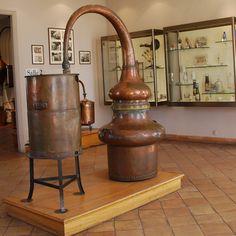 CHECK! Fragonard's Perfume Museum, Grasse, France (the perfume capital of the world).  So very interesting!