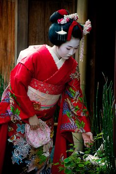 Maiko in Kyoto by Jesús Vallejo on 500px