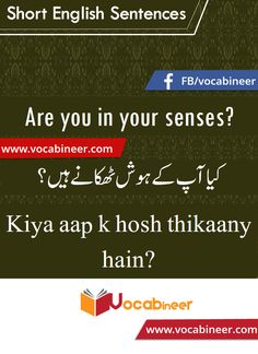 Learn English vocabulary in Urdu. English through Urdu made easy. Easiest way to learn English vocabulary in Urdu. English to Urdu Vocabulary. Basic English Sentences, English Grammar Tenses, English Vocabulary Words, Learn English Words, English Study, English Lessons, Pakistan Language, English Collocations, Learn Another Language
