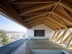 APOLLO Architects & Associates LATTICE