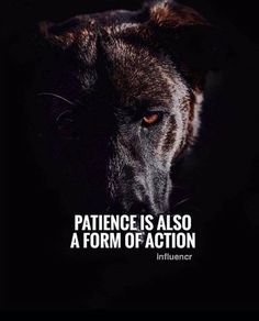 Positive Quotes : QUOTATION – Image : Quotes Of the day – Description Patience is also a form of action. Sharing is Power – Don't forget to share this quote ! Wisdom Quotes, Quotes To Live By, Me Quotes, Motivational Quotes, Inspirational Quotes, Qoutes, Millionaire Lifestyle, Mantra, Inspiration Entrepreneur