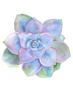 Blue Succulent watercolor giclée reproduction. Portrait/vertical orientation. Printed on fine art paper using archival pigment inks. This quality printing allows over 100 years of vivid color in a typ