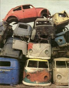 Junkyard with cool VW vans. . . and a bug