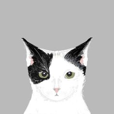 """East Urban Home Cat by Pet Friendly Graphic Art on Wrapped Canvas Size: 12"""" H x 12"""" W x 1.5"""" D"""