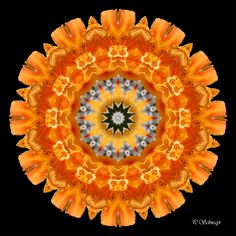 Mandala ''Lilie orange'' Kreatives by Petra Petra, Orange, Photoshop, Macro Photo, Fruit, Creative, Canon, Mandalas, Photos