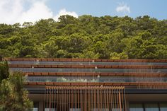 Image 9 of 49 from gallery of Maxx Royal Kemer Hotel / Baraka Architects. Courtesy of Baraka Architects Antalya, Spa, Site Plans, Hospitality Design, Porch Swing, Hotels And Resorts, Pavilion, Landscape Design, Tropical