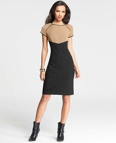 Petite Tipped Colorblocked Sheath Dress