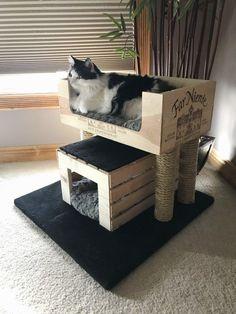 Cat House Diy, Diy Cat Tree, Cat Trees Diy Easy, Cat Towers, Cat Playground, Cat Condo, Cat Room, Pet Furniture, Furniture Cleaning