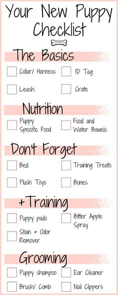 Your New Puppy Checklist   Dog Infographic  