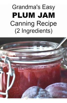 Develop A The Moment Upon A Dream Fairy Tale Birthday Bash Grandma's Easy Plum Jam Canning Recipe Plum Jam Recipes Easy, Plum Jelly Recipes, Fruit Recipes, Drink Recipes, Jam And Jelly, Jelly Fun, Jelly Time, Easy No Bake Desserts, Canning Recipes
