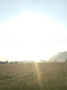 Feld vorne - Sonne hinten.