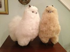 Why do people love alpacas? Because they're adorable, and they have an amazing natural fleece that can be harvested and used for a lot of different things. It's super soft, warm, and durable. Alpaca Stuffed Animal, Cute Stuffed Animals, Cute Baby Animals, Funny Animals, Alpacas, Alpaca Peluche, Cute Alpaca, Alpaca Wool, Cute Plush
