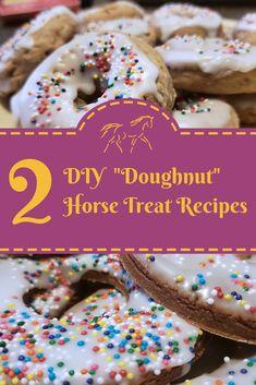 - Two DIY Doughnut Horse Treat Recipes Horses And Dogs, Cute Horses, Treats For Horses, Beautiful Horses, Homemade Horse Treats, Horse Cookies, Horse Camp, Horse Birthday, Birthday Treats