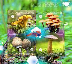 Post stamp Maldives MLD 14802 aMushrooms (Cantharellus cibarius, Amanita velosa,  Macrolepiota procera, Boletus badius)
