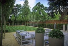 Total Green, Minimal Garden With Pots Hampton Garden, Garden Fencing, Garden  Planters,