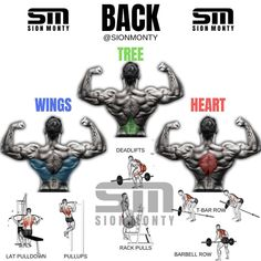 Workout - 5 Unusual & Effective Back Exercises fitness bodybuilding gym motivation workout fit back fitfam gymlife muscle fitnessmodel healthy shredded gains Logo Fitness, Humour Fitness, Ace Fitness, Fitness Video, Tips Fitness, Fitness Motivation, Workout Fitness, Fitness Plan, Fitness Tracker
