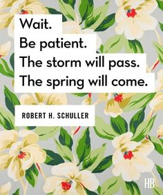 Wait. Be patient. The storm will pass. The spring will come. ~ Robert Schuller