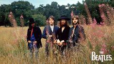 HD wallpaper: The Beatles, Paul McCartney, John Lennon, George Harrison, Ringo Starr George Harrison, John Lennon, Timothy Leary, Strawberry Fields Forever, Abbey Road, Beatles Band, The Beatles, Ringo Starr, Mick Jagger