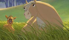 Spirit Stallion of the Cimarron (Disney) (Dreamworks) Spirit Horse Movie, Spirit The Horse, Spirit And Rain, Dreamworks Animation, Disney And Dreamworks, Animation Film, Bambi, Ocelot, Spirit Drawing