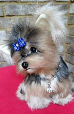 ELLA a life size Yorkshire Terrier puppy dog By Brigitte Crowe - Bear Pile