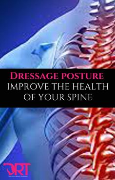 Dressage posture, exercises to keep your spine healthy