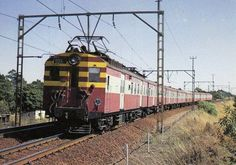 Fabulous postcards of Steam Trains and Modern Traction from Southern Africa brought to you by Vidrail. Electric Locomotive, Steam Locomotive, South African Railways, South Afrika, Railroad Photography, Electric Train, Train Journey, Steam Engine, Tree Houses