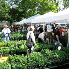 Check out Green City Market in Lincoln park on Sat morning - curated by @Rick_Bayless and @OpenSky . http://www.jetsetter.com/win/opensky #FoodieCity