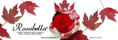 Foliage d'autunno 🍂🍃🍁 #foliage #autunno #rosabella #rosastabilizzata #rosagioiello Swarovski, Flag, Pink, Science, Flags