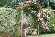66 stunning small cottage garden ideas for backyard inspiration garden… - Modern Small Cottage Garden Ideas, Garden Cottage, Rose Cottage, Cottage Style, Backyard Cottage, Amazing Gardens, Beautiful Gardens, Flower Carpet, Rose Garden Design