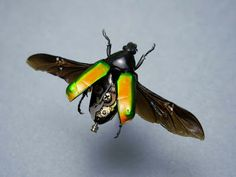 Amazing insect sculptures by Insect lab - Anjas' Theme Of The Week