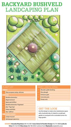 Landscaping Trees, Concrete Pots, Entrance Gates, Wooden Pallets, Shrubs, Deck, Backyard, How To Plan, Landscape