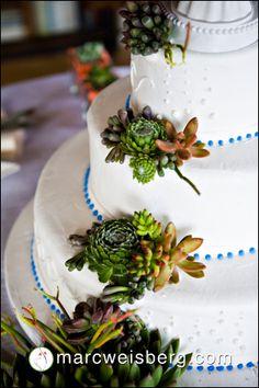 Vintage-Succulent-Wedding-Florals-0062