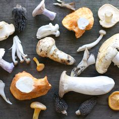 Assorted mushrooms, including wild chanterelles, wild lobsters, wild matsutakes, chicken of the woods, hen of the woods, white chanterelles, and hedgehogs.